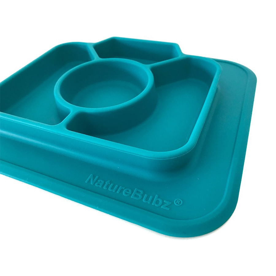 Silicone-Divided-Camera-Plate-Teal-2